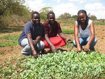 Mary (i mitten) är moster till Caroline och den som är huvudansvarig för odlingarna. Anna (till höger) jobbar för organisationen Dandelion. Här visar de upp småplantorna som snart ska sättas ut på fältet.