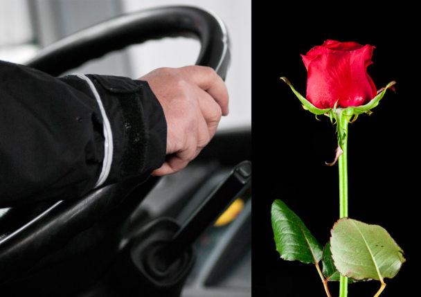 Nobinas bussförare får rosor.
