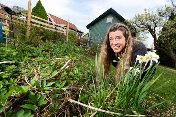 Ulrika Winblad i sin koloniträdgård.