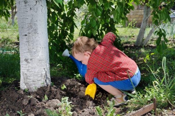 Barn trivs bäst i grönska.