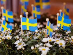 Nationaldagen den 6 juni infalller i år på en söndag.